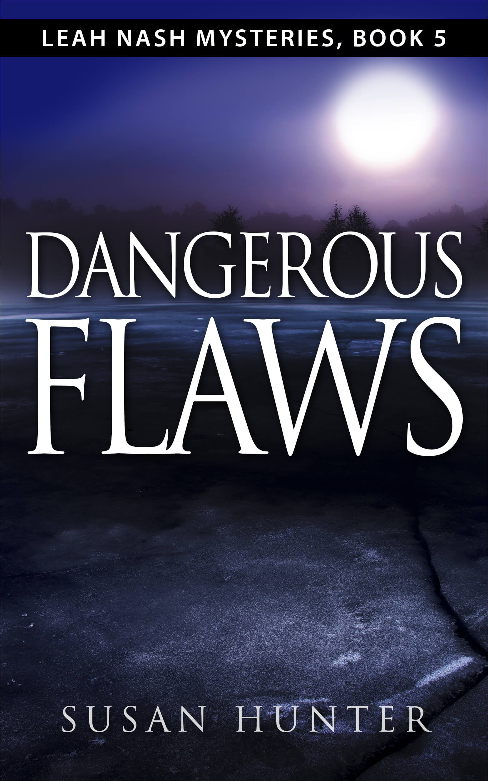 Dangerous Flaws by Susan Hunter